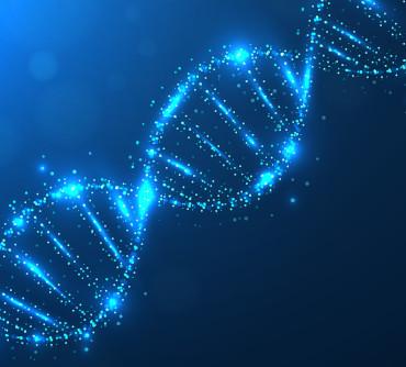 O DNA da Reinvenção no novo mundo Digital